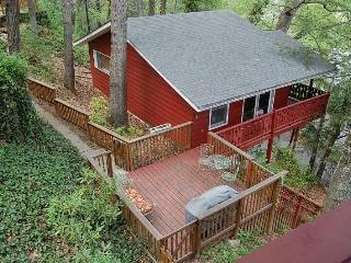 Pet-Friendly cabin 3 min. to downtown Asheville! - Asheville vacation rentals