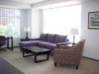 Furnished apartments in Boston and Cambridge - Cambridge vacation rentals