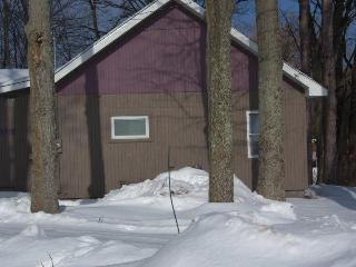 Northern Michigan 4 Bedroom Home Platte River - Honor vacation rentals
