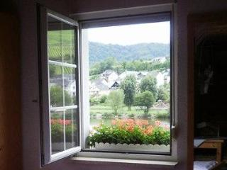 My Europe Base, Zell, Mosel River, Rhineland - Zell (Mosel) vacation rentals