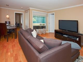 Downtown Vancouver 2 Bedroom Spectacular Well Appointed Executive Condo - Bowen Island vacation rentals