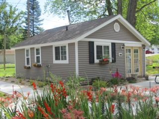 Cabin Rentals OPEN ALL YEAR - Delton vacation rentals