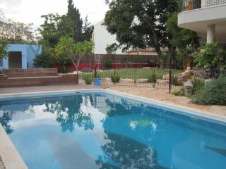 Eco Garden Apartment with Private Pool - Herzlia vacation rentals
