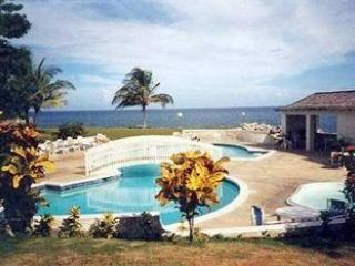 Spacious beachfront condo - Saint Mary Parish vacation rentals