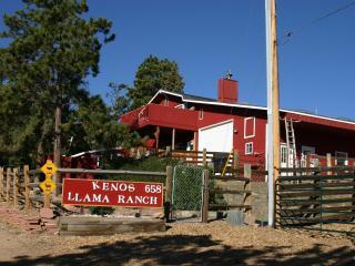 Kenos Llama Ranch & Condos - Estes Park vacation rentals