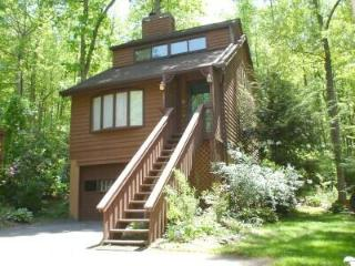 DREAM CHALET/Hot Tub/ King/2 Qu/Massage Chair/FP - Asheville vacation rentals