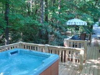 Secluded Twin Creek/Hot Tub/King/MassageChair/WiFi - Asheville vacation rentals