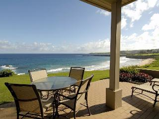 Gorgeous Condo with Internet Access and A/C - Kapalua vacation rentals