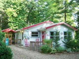 Romantic Story Book Cottage/HotTub/King/Q/FP/WiFi - Asheville vacation rentals
