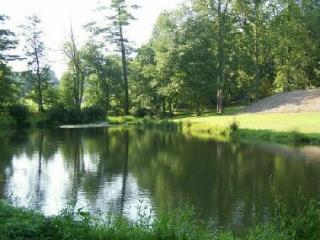 6BR/4BA/4000SF/Lake Front/HotTub/Kings/Massage Chr - Asheville vacation rentals