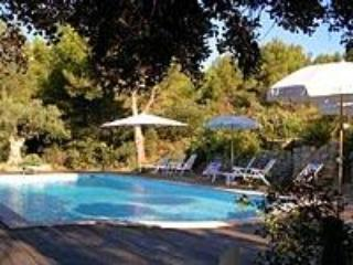 Mas la Monaque, Provence, Superb 5 Bedroom Villa with Grill and Fireplace - Paris vacation rentals