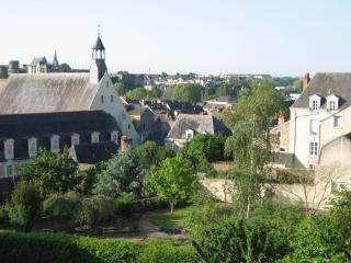 Logis de la Roche Corbin - Western Loire vacation rentals