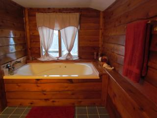 Kishauwau Cabins near Starved Rock Utica IL Dlx WP - Utica vacation rentals