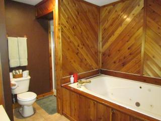 Kishauwau Cabins near Starved Rock Utica IL Whrlpl - Utica vacation rentals