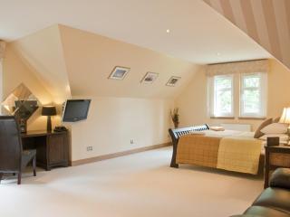 10 berth luxury lodge on the banks of loch lomond - Ardlui vacation rentals