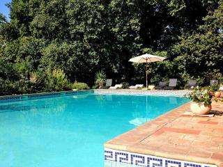 Charming terraced Apt in Hermitage Wine Castle - Servian vacation rentals