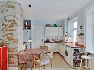 Copenhagen apartment near Central Station & Tivoli - Copenhagen vacation rentals