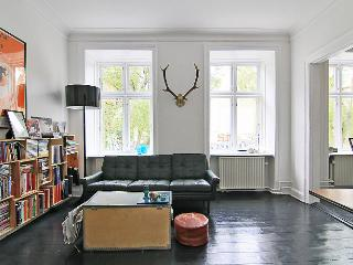 Copenhagen apartment near the lakes & Noerreport St. - Copenhagen vacation rentals