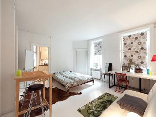 Copenhagen apartment in the city centre - Copenhagen vacation rentals