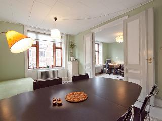 Nice Copenhagen apartment near Tivoli & Central Station - Copenhagen vacation rentals
