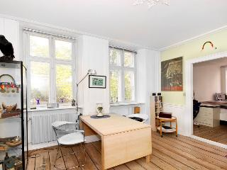 Centrally located Copenhagen apartment - Copenhagen vacation rentals