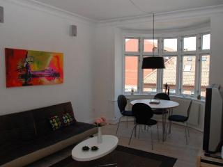Modern Copenhagen apartment close to the Metro - Copenhagen Region vacation rentals