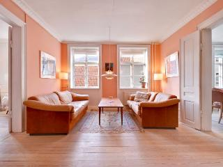 Charming Copenhagen apartment in the city centre - Copenhagen vacation rentals