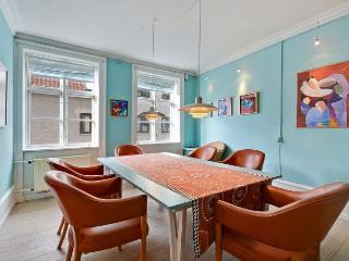 Charming Copenhagen apartment in the city centre - Copenhagen vacation rentals