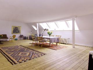 Beautiful and large Copenhagen apartment near Nyhavn - Copenhagen Region vacation rentals