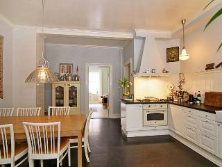 Large Copenhagen apartment with courtyard - Denmark vacation rentals