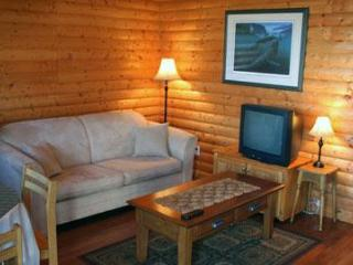 Perfect 3 bedroom Raleigh Cabin with Deck - Raleigh vacation rentals