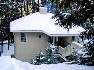 Yosemite House in the snow - 3 bedroom luxury home -Yosemite Pine Arbor Retreat - Yosemite National Park - rentals