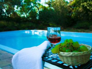 Detached house with private pool in Wine Castle - Octon vacation rentals