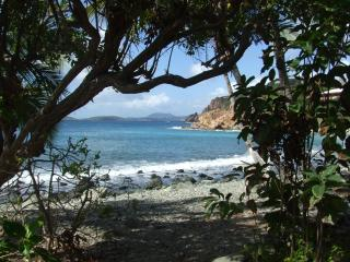 Mampoo Hill; beach house 20 yrds from the ocean - Virgin Islands National Park vacation rentals
