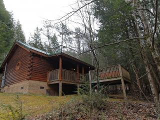 BEARY NAUGHTY - Sevierville vacation rentals