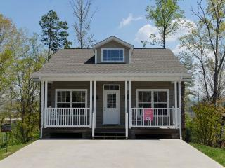 SUNSET PASSION - Pigeon Forge vacation rentals