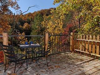1 bedroom House with Internet Access in Sevierville - Sevierville vacation rentals