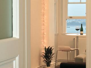 elegance and fantastic views in galata - Istanbul vacation rentals