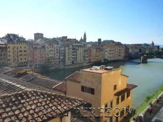 Perfect Views-Ponte Vecchio-Terrace-Luxury-Memoria - Calenzano vacation rentals