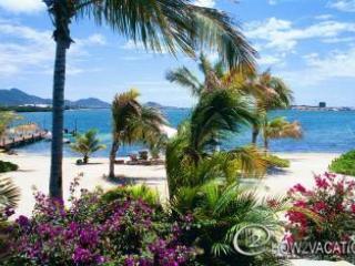 LA SALAMANDRE... glorious 6 BR wedding villa, private beach & boat dock - Terres Basses vacation rentals