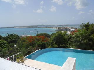 LA DI DA...St Maarten villa high atop a mountain at the mouth of Pelican Key - Pelican Key vacation rentals