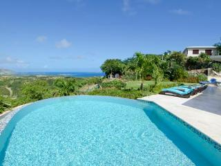 ON ISLAND TIME....get away from it all, very private villa - Oyster Pond vacation rentals