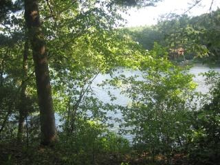 Private Lakefront home in Woods, Belchertown, MA - Springfield vacation rentals