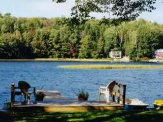 Dock Area - 3 bedroom lake home on Crescent lake - Newport - rentals