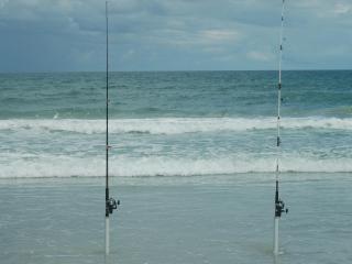 Our condo in New Smyrna Beach Florida - Florida Central Atlantic Coast vacation rentals