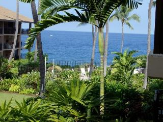 Ocean Front Kona Makai Perfect Sunset Views Furnished 1 bedroom Condo - Kailua-Kona vacation rentals