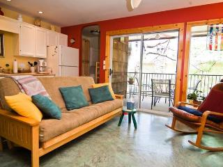 Beautiful Zilker Park Condo-Walk to Zilker Park- - Austin vacation rentals