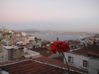 Istanbul Taksim Center 3 or 2 Bedroom Flats in Cihangir with Sea View - Istanbul vacation rentals