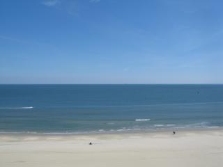 3 bedroom beach facing luxurious renovated condo - Virginia Beach vacation rentals