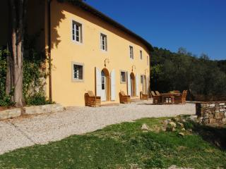 Farmhouse for Rent Close To Lucca - Casa Arsina - Lucca vacation rentals